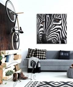 Toile décorative pour salon têtes de zèbres dit Duo