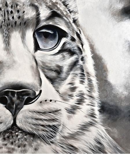 Reproduction animalière tête de tigre dit Maturité