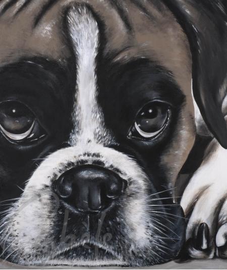 Peinture décorative tête de chien