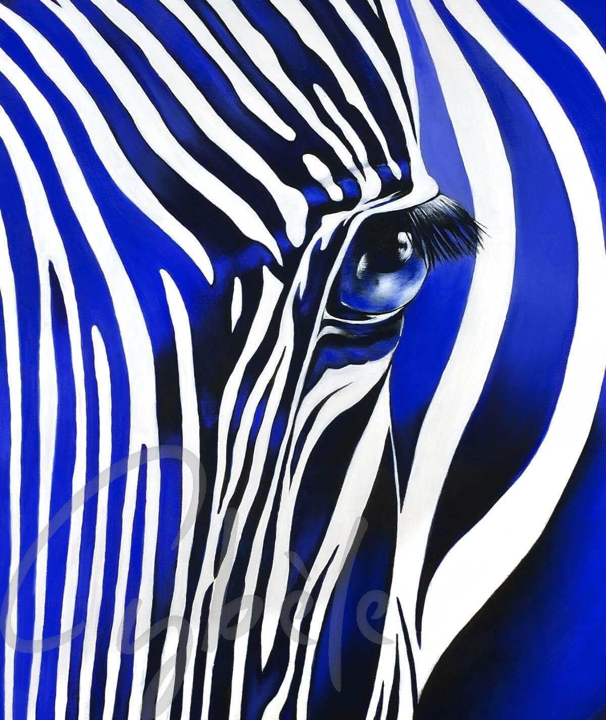 Reproduction animalière zèbre bleu