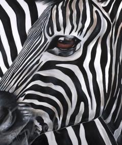 Reproduction animalière tête de zèbre dit Zoom