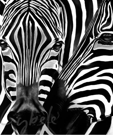 Reproduction animalière têtes de zèbres dit Complicity